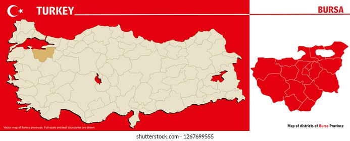 Vector map of Turkey provinces and Map of districts of Bursa Province. Full-scale and real boundaries are drawn.