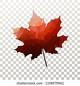 Canadian Maple Leaf Transparent Images Stock Photos Vectors Shutterstock