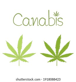 Vector - Marijuana Canabis or Ganja green leaf. Can made drug, Healthcare, medical concept.