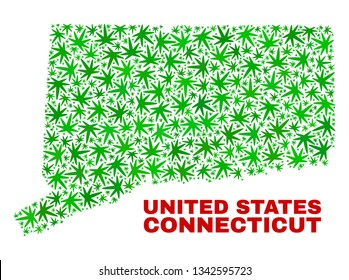 Vector marijuana Connecticut State map collage. Concept with green weed leaves for marijuana legalize campaign. Vector Connecticut State map is organized from marijuana leaves.