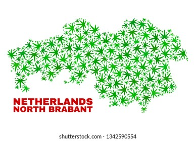 Vector marijuana North Brabant Province map mosaic. Concept with green weed leaves for weed legalize campaign. Vector North Brabant Province map is created from weed leaves.