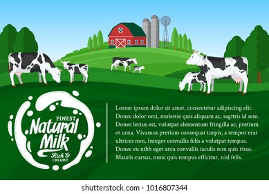 Vector milk illustration. Summer rural landscape with cows, calves and farm.