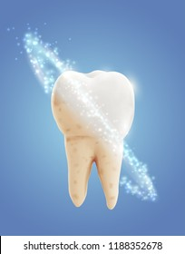 vector molar tooth. beauty and health. tooth cleaning and personal care