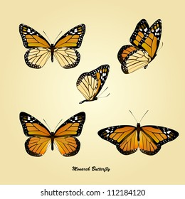 vector of monarch butterfly