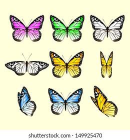 vector monarch butterfly