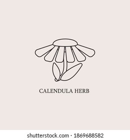 Vector monochrome emblems - healthy herbs for print or package design. Medicinal, cosmetic plant- calendula flower with leaves and petals. Logo or icon in trendy simple linear style.