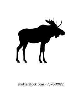vector moose silhouette