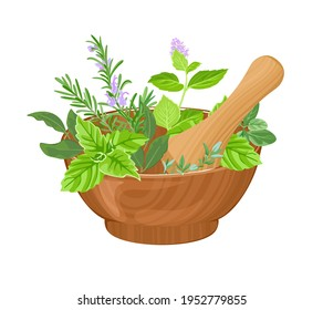 Vector mortar, pestle and fragrant fresh herbs isolated on white background. Cartoon flat illustration.