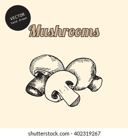 Vector mushrooms. Background consist of mushrooms. Sketch art style.