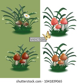 Vector. Mushrooms in the forest or field, decoration for garden, mushrooms in the grass, edible and poisonous toadstool . Illustrations in 3D.