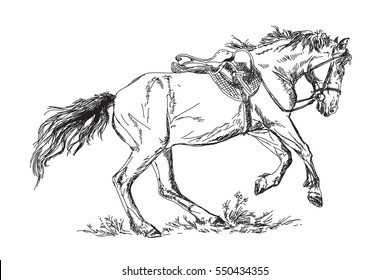 Vector Mustang  in gallop