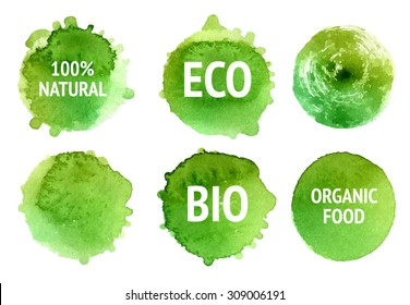 Vector natural, organic food, bio, eco labels and shapes on white background. Hand drawn watercolor stains set.