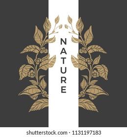 Vector nature emblem Luxury art design Natural symbol, floral card of tea tree, bush, branch, leaf, flower Herbal drink, green food, bio vegan logo, organic plant, gold label, frame for packing, cover