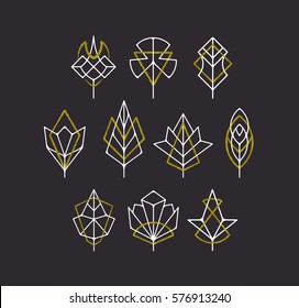 Vector nature leaves and trees' symbols, white and golden geometrical logotypes' set