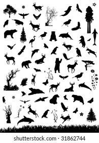 Vector Nature Silhouettes