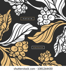 Vector nature template Art deco design, banner with realistic silhouette branch of coffee tree, plant, leaf, bean Tropical garden Organic floral packing Botanical illustration, card, retro background