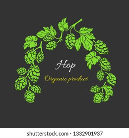 Vector nature template. Hop branch with leaf and cone. Botanical art realistic shape of plant. Natural organic drink, beer. Bio frame, herbal pattern. Simple design for card, pub. Botany design