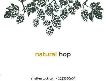 Vector nature template Natural hop Shape frame, border Bio beverage Art banner on white background Herbal cone, leaves, branch Simple design for beer print, pub Organic food Botany set Organic pattern