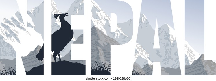 vector Nepal illustration with himalayan monal