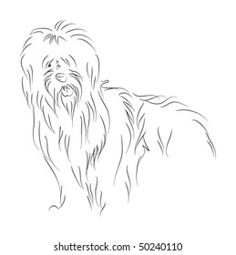 vector  old english sheepdog sketch