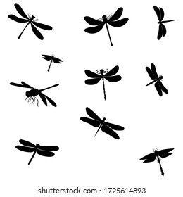 vector, on a white background, black silhouette of a dragonfly fly, background