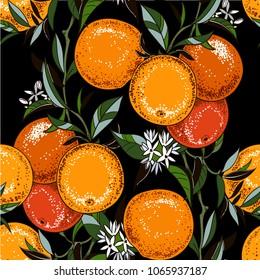 Vector orange branch seamless pattern. Vintage botanical hand drawn illustration. The orange tree.