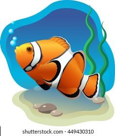 Vector orange clown fish swimming on the blue deep sea bottom