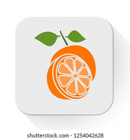 vector orange icon. Flat illustration of fresh orange. orange fruit isolated on white background. orange slice sign symbol