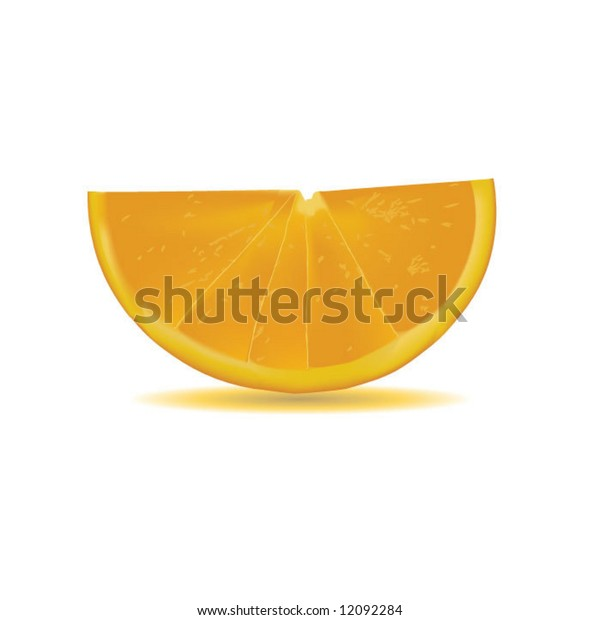 vector of orange slice