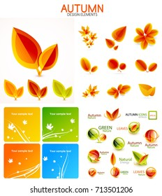 Vector orange and yellow autumn seasonal leaves, trees concepts. Mega collection of design elements