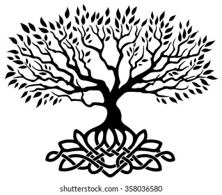 celtic tree of life images stock photos vectors shutterstock rh shutterstock com tree of life vector free download tree of life vector free download