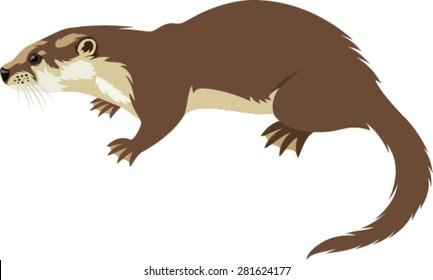 Vector Otter, Lutra lutra