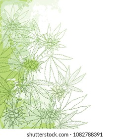 Vector outline Cannabis sativa or Cannabis indica or Marijuana bunch. Corner branch, leaves and seed on the pastel green textured background. Medicinal plant in contour style for summer design.