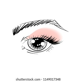 Vector outline eye with brow, eye lashes and eye shadow for poster, banner, logo, icon. Template for testing makeup colors, any business concept, makeup artist, beauty salon, cosmetic label, visage