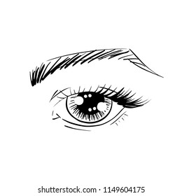 Vector outline eye with brow and eye lashes for poster, banner, logo, icon. Template for testing makeup colors, any business concept, makeup artist, beauty salon, cosmetic label, visage, makeup brand