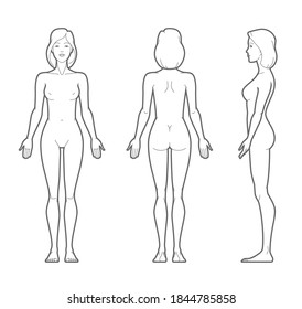 Vector outline illustration of female body. Front, rear, and side views.