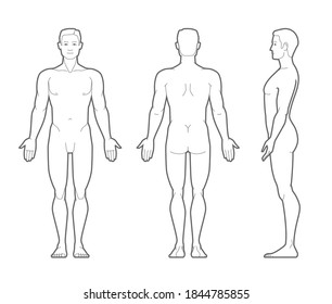 Vector outline illustration of male body. Front, rear, and side views.