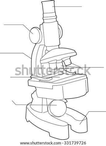 Vector Outline Microscope Diagram Stock Vector Royalty Free