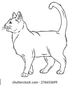 Vector outline sketch if a cat standing