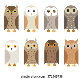 Vector owl characters set.  Owl icons. Barn owl, snowy owl, burrowing owl, West American owl, eagle owl, long-eared owl, tawny owl, the North American owl.