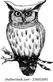 Vector owl on a branch-3. White and black.