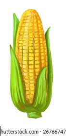 vector paint hand drawn picture of corn