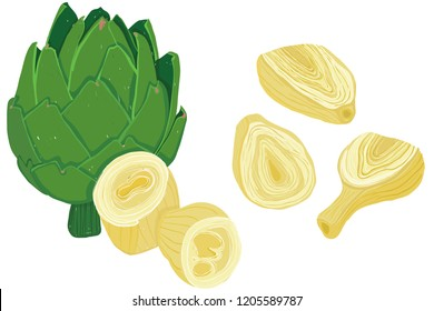 Vector painterly set of artichokes, raw and cooked; editable, scalable illustration isolated on a white background. Use it for recipes, restaurant menus and as food elements.
