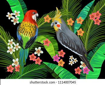 Vector painting with australian parrots, rosella and cockatiel surrounded by palm leaves and exotic flowers. Realistic birds plants. Colorful summer illustration. Wildlife background.