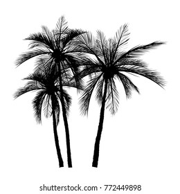 vector of palm tree silhouette icons on white background, coconut tree flat icon for vacation apps and websites.
