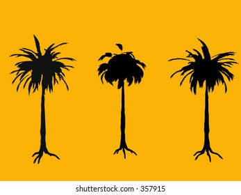 Vector palm tree silhouettes