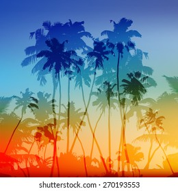 Vector palms silhouettes vector tropical sunset background