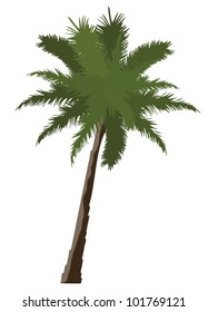vector palmtree isolated