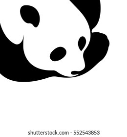 Vector of a panda design on a white background. Wild Animals.