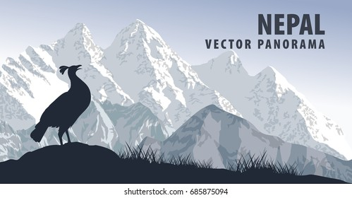 vector panorama of Nepal with himalayan monal